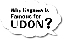 Why Kagawa is Famous for UDON?